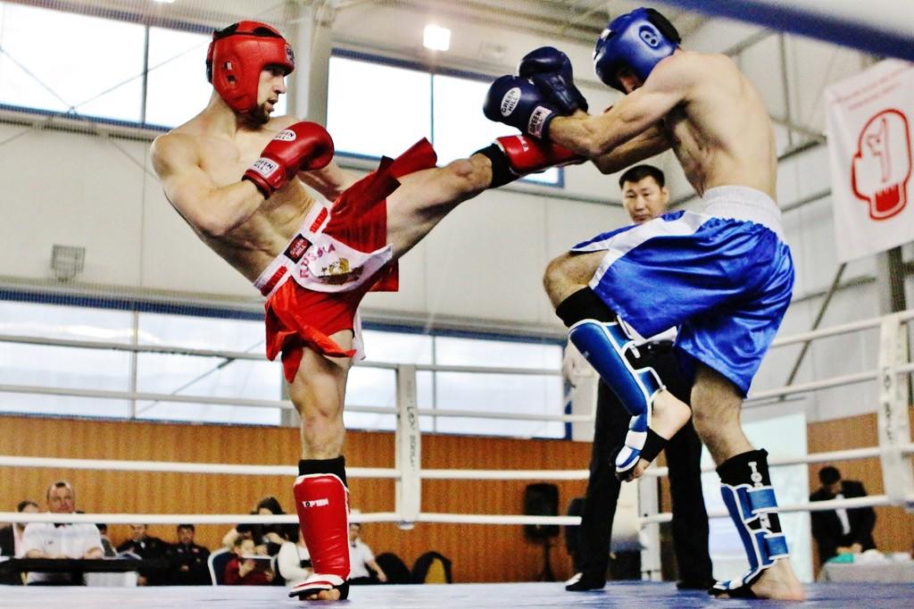картинка кик боксинг ручной тип комнатных