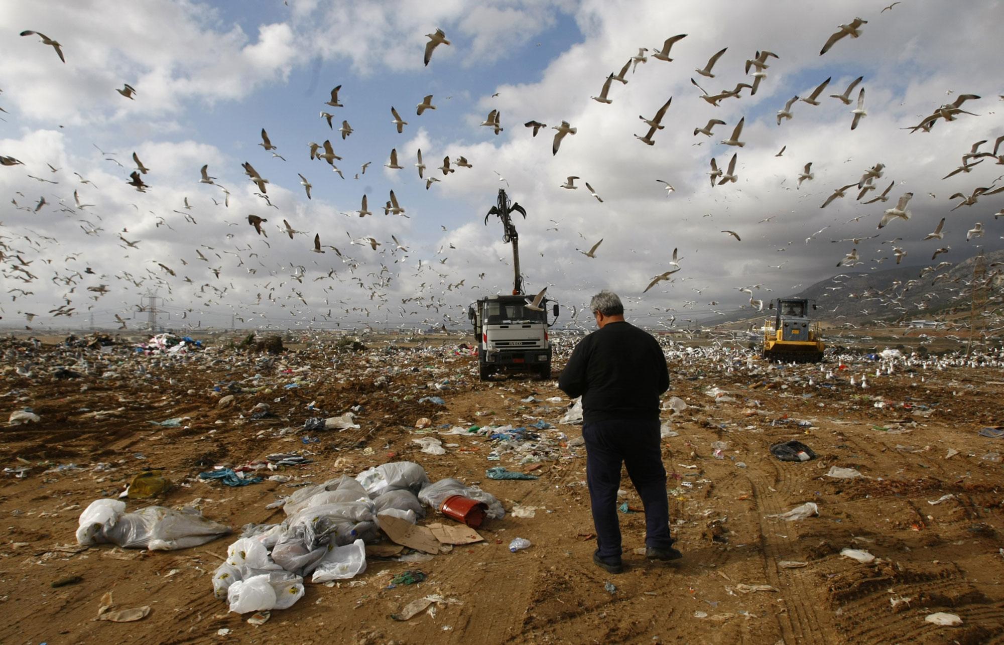 удерживался картинки экологическими проблемами надзор