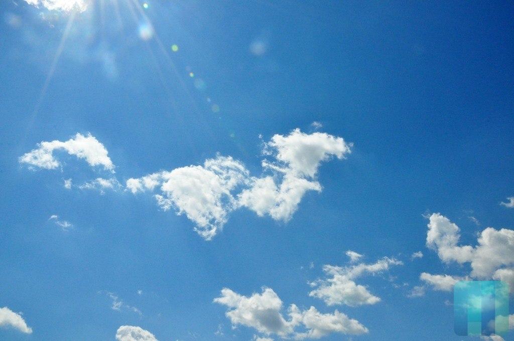 Дожди идоплюс 18 градусов ожидаются вмосковском регионе вначале рабочей недели