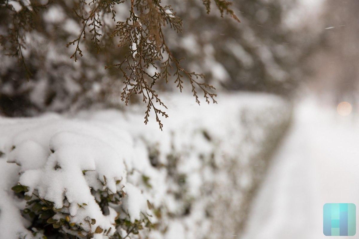 Погода тетюши татарстан на месяц