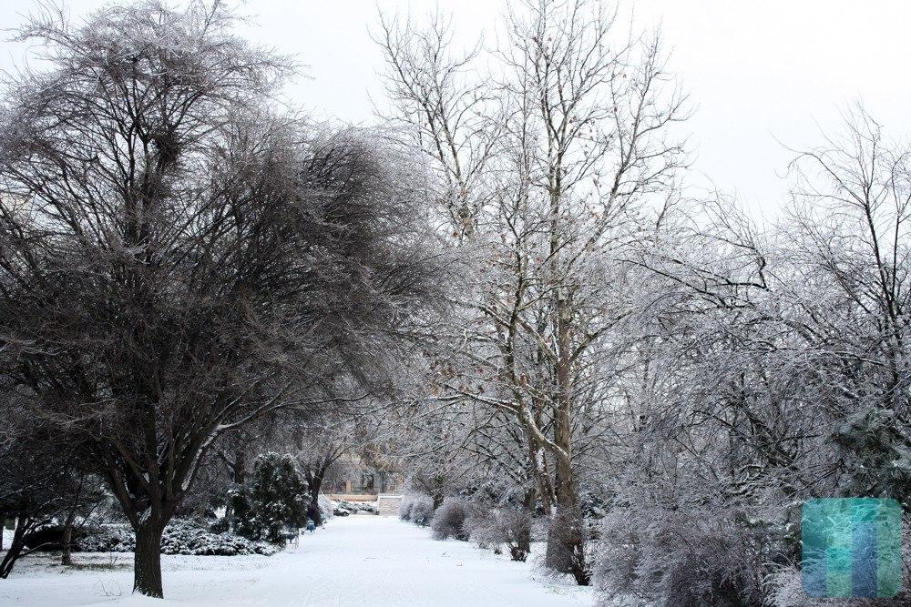 Сегодня днем, 7февраля, вгосударстве Украина усилятся морозы