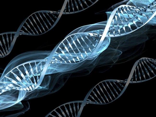 В «Поднебесной» открывается 1-ый банк генов
