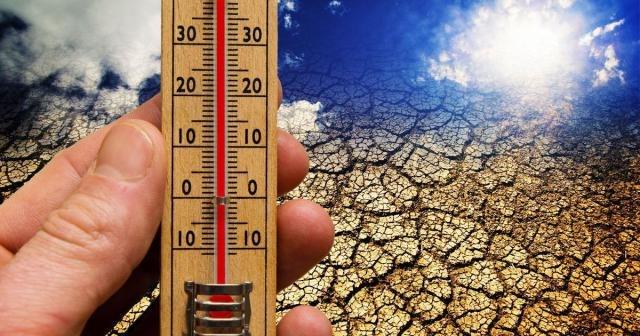 Климатологи: Аномально высокая температура будет «новой нормой» к 2040г