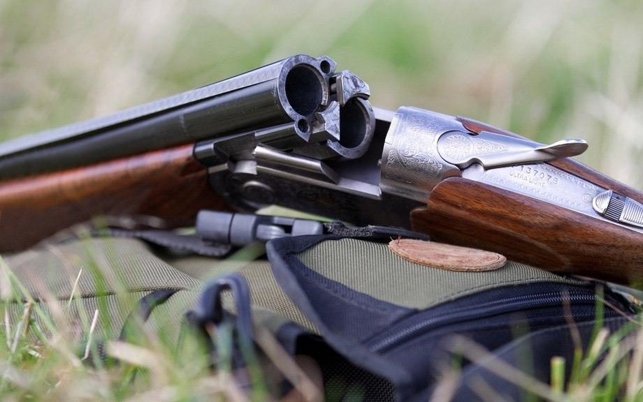 Сезон охоты назайца илисицу вАлтайском крае откроют 1ноября