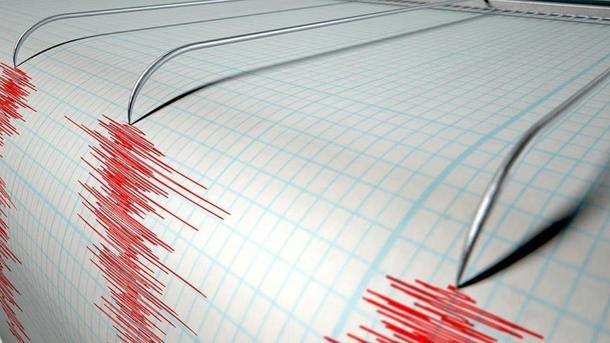 ВТихом океане случилось землетрясение магнитудой 5,7