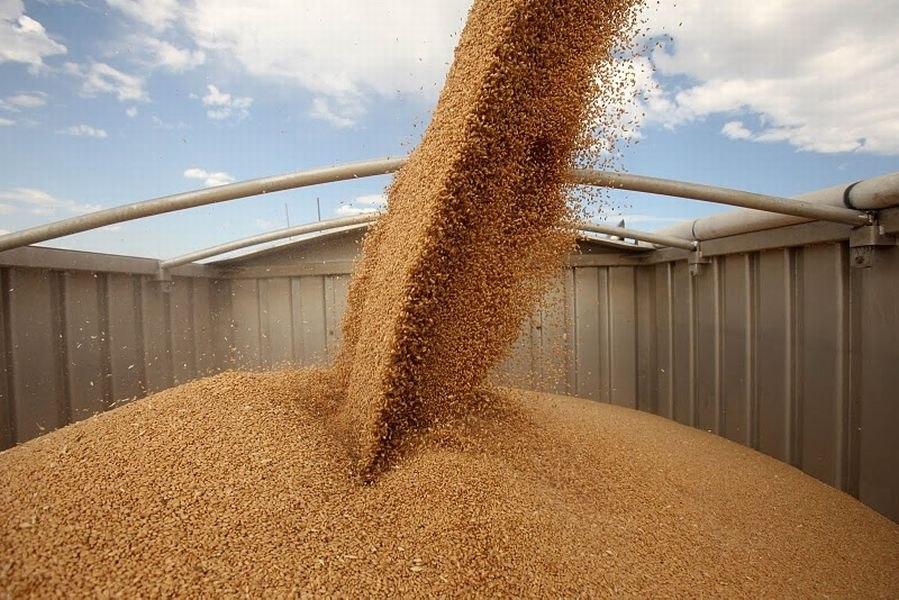Российская Федерация вышла нафранцузские экспортные рынки зерна